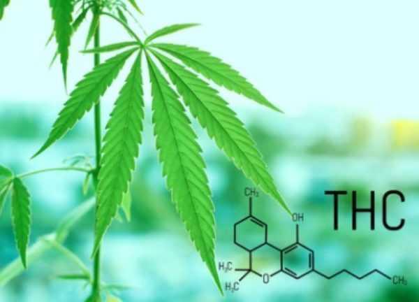 THC compound