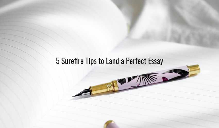 5 Surefire Tips to Land a Perfect Essay